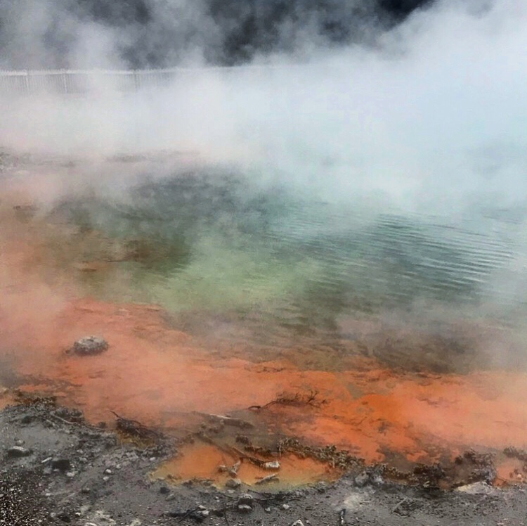 A steaming geothermal lake in Wai-O-Tapu park